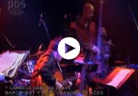 Marc Ribot Y Los Cubanos Postizos - CARMELA DAME LA LLAVE